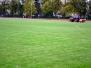 Futbola laukuma zālāja kopšana